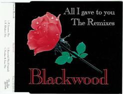 All I Gave To You (The Remixes)