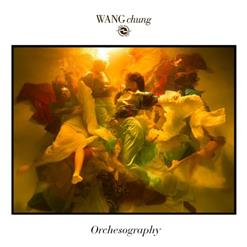 Orchesography